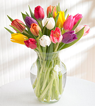 15 Stem Mixed Tulip Bouquet